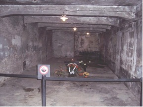 Alleged Gas Chamber Krema 1
