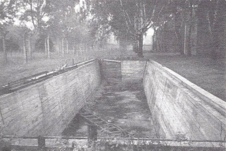 Auschwitz Swimming pool