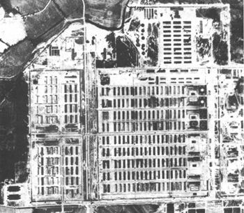 Portion of Allied air photo of Auschwitz-Birkenau, May 31, 1944